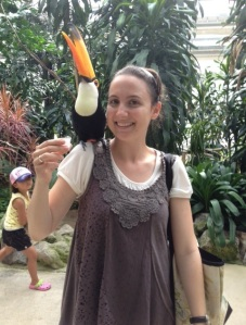 Who needs a parrot when you can have a toucan?